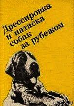 Выращивание, воспитание, дрессировка и натаска охотничьей собаки за рубежом