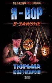 Тюрьма особого назначения - Горшков Валерий Сергеевич