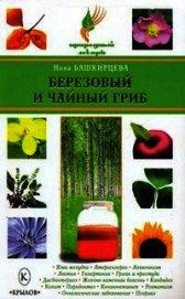 Березовый и чайный гриб