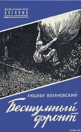 Бесшумный фронт - Воляновский Люциан