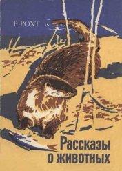 Книга Рассказы о животных - Автор Рохт Рихард