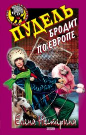 Пудель бродит по Европе - Нестерина Елена Вячеславовна