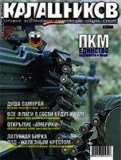 Книга Воздушный удар - Автор Сильников Михаил