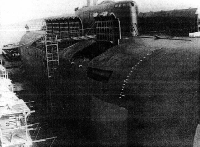 Ударная сила флота (подводные лодки типа «Курск») - pic_1.jpg