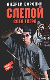След тигра - Воронин Андрей Николаевич