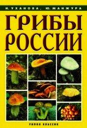 Книга Грибы России - Автор Уханова Ирина Александровна