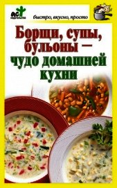 Борщи, супы, бульоны – чудо домашней кухни - Костина Дарья