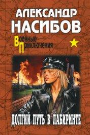 Долгий путь в лабиринте - Насибов Александр Ашотович
