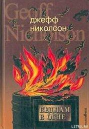 Бедлам в огне - Николсон Джефф