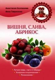 Книга Вишня, слива, абрикос - Автор Колпакова Анастасия Витальевна