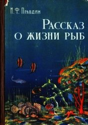 Рассказ о жизни рыб - Правдин Иван Федорович
