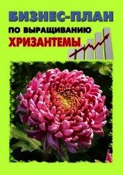 Бизнес-план по выращиванию хризантемы