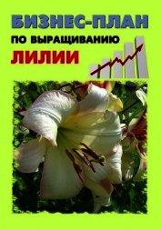 Книга Бизнес-план по выращиванию лилии - Автор Бруйло А. С.