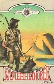 Книга Каменный век - Автор Робертс Чарльз