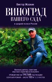 Книга Виноград вашего сада в средней полосе России - Автор Жвакин Виктор