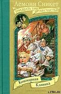 Серия книг Тридцать три несчастья