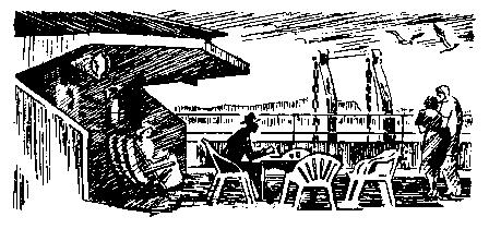 Экипаж «Меконга» (илл. И. Сакурова) - pic_4.png