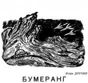 Бумеранг - Дручин Игорь Сергеевич
