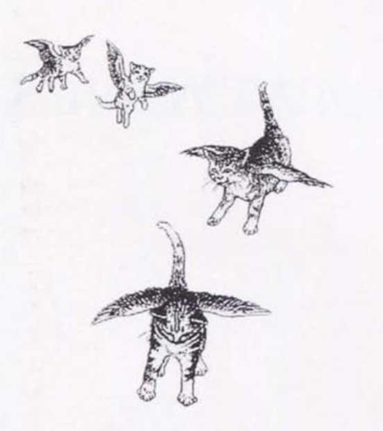 Крылатые кошки - i_001.jpg