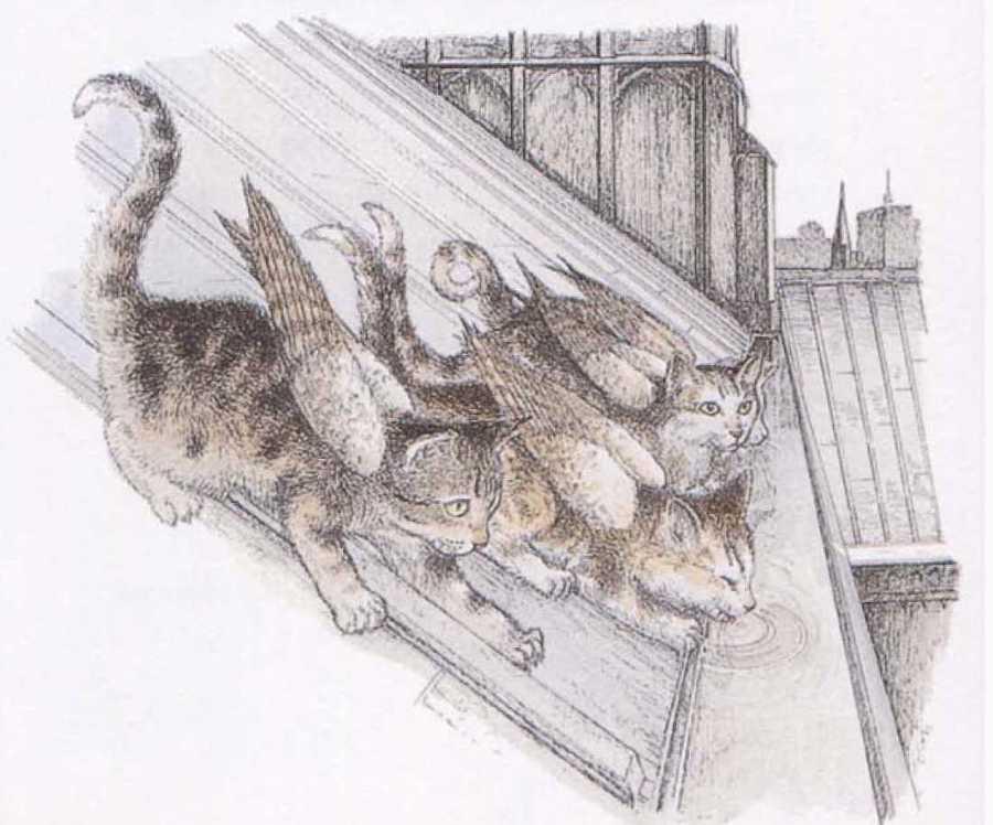 Крылатые кошки - i_008.jpg