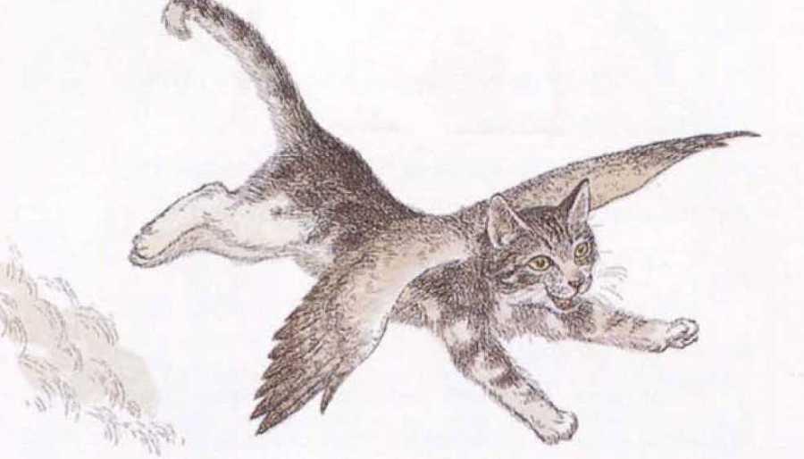 Крылатые кошки - i_009.jpg