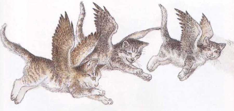 Крылатые кошки - i_010.jpg