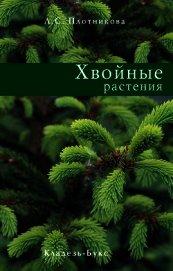 Хвойные растения - Плотникова Лилиан С.