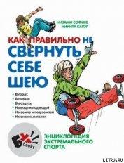Книга Как правильно не свернуть себе шею - Автор Софиев Низами
