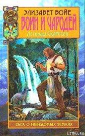 Книга Воин и чародей - Автор Бойе Элизабет