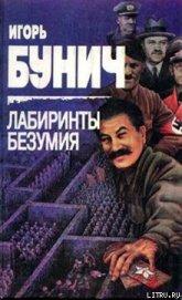 Книга Лабиринты безумия - Автор Бунич Игорь Львович