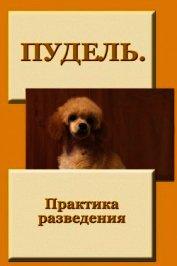 Книга Пудель. Практика разведения - Автор Мельников Илья