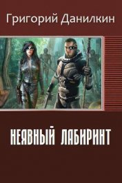 Неявный лабиринт (СИ) - Данилкин Григорий Владимирович