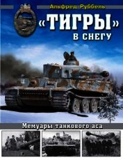 «Тигры» в снегу<br />Мемуары танкового аса