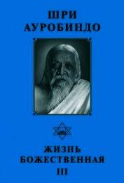 Шри Ауробиндо. Жизнь Божественная – III
