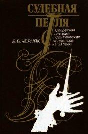 Судебная петля. Секретная история политических процессов на Западе - Черняк Ефим Борисович