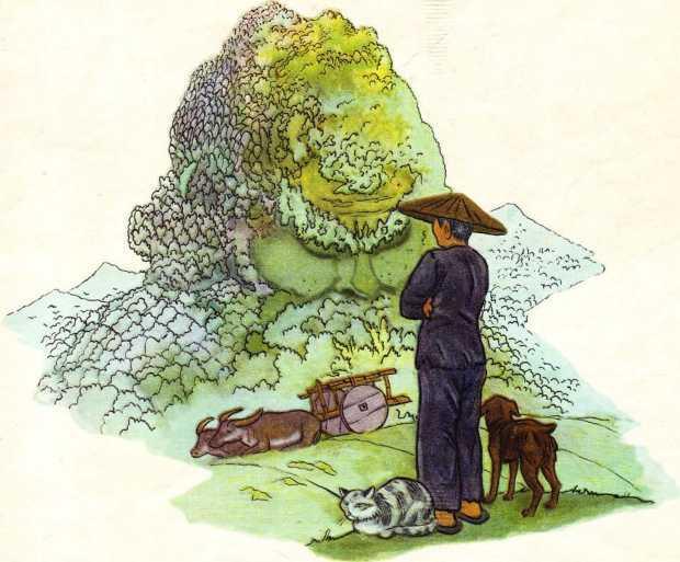 Гора смешливая, справедливая<br />(Вьетнамская народная сказка) - i_012.jpg