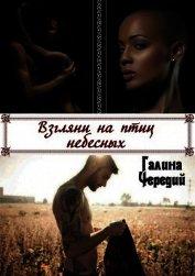 Взгляни на птиц небесных (СИ) - Чередий Галина