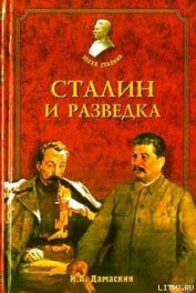 Сталин и разведка - Дамаскин Игорь Анатольевич