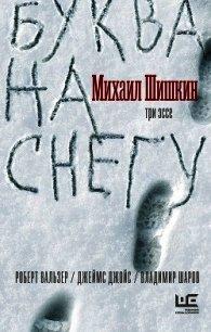 Буква на снегу - Шишкин Михаил Павлович