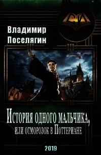 История одного мальчика, Или отморозок в Поттериане (СИ) - Поселягин Владимир Геннадьевич