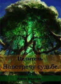 Целитель. Навстречу судьбе (СИ) - Егорова Алена