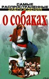 Самые распространенные заблуждения о собаках