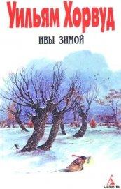 Ивы зимой