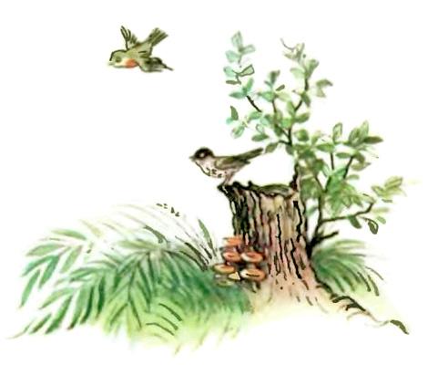 Лесной плакунчик (рис. Сутеева) - i_001.jpg