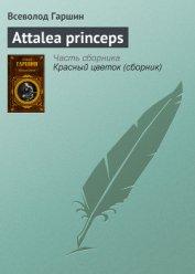 Аttalea princeps - Гаршин Всеволод Михайлович